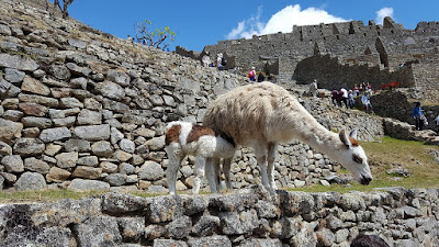 interesting Facts About Machu Picchu