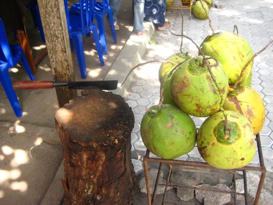 발리 코코넛