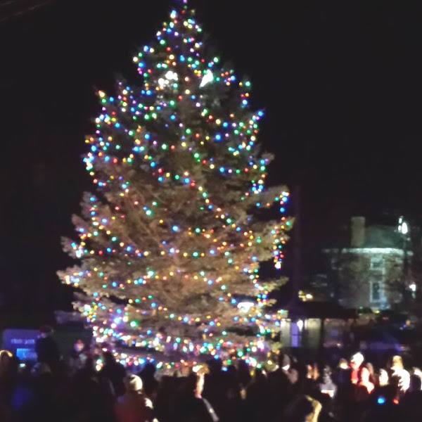 Historical Society Serving Cookies at the Annual Farmington Tree Lighting Event