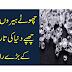 Chutay Hiroon Ka RAAZ | History Of Diamond.