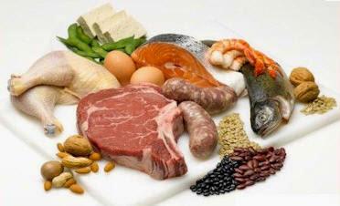 kepelbagaian sumber protein yang boleh kita dapati