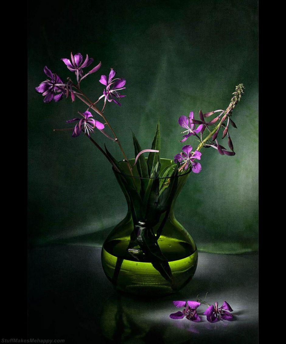 Vase of flowers in a dark room. (Photo by IMAGE COPYRIGHTBENTE KLEVENBERG):