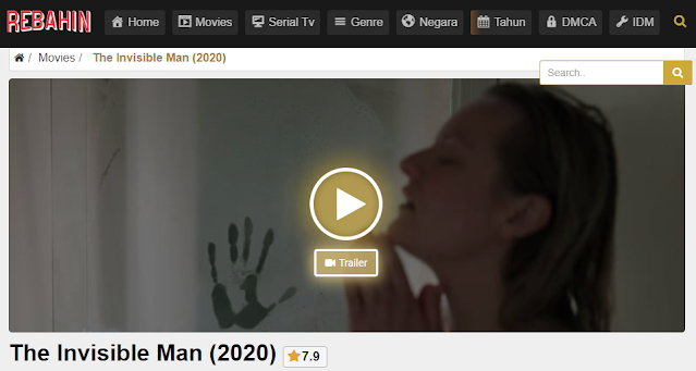 Nonton Film The Invisible Man (2020) Sub Indo Full Movie | Link 2021