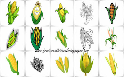 15 surprising corn clipart free
