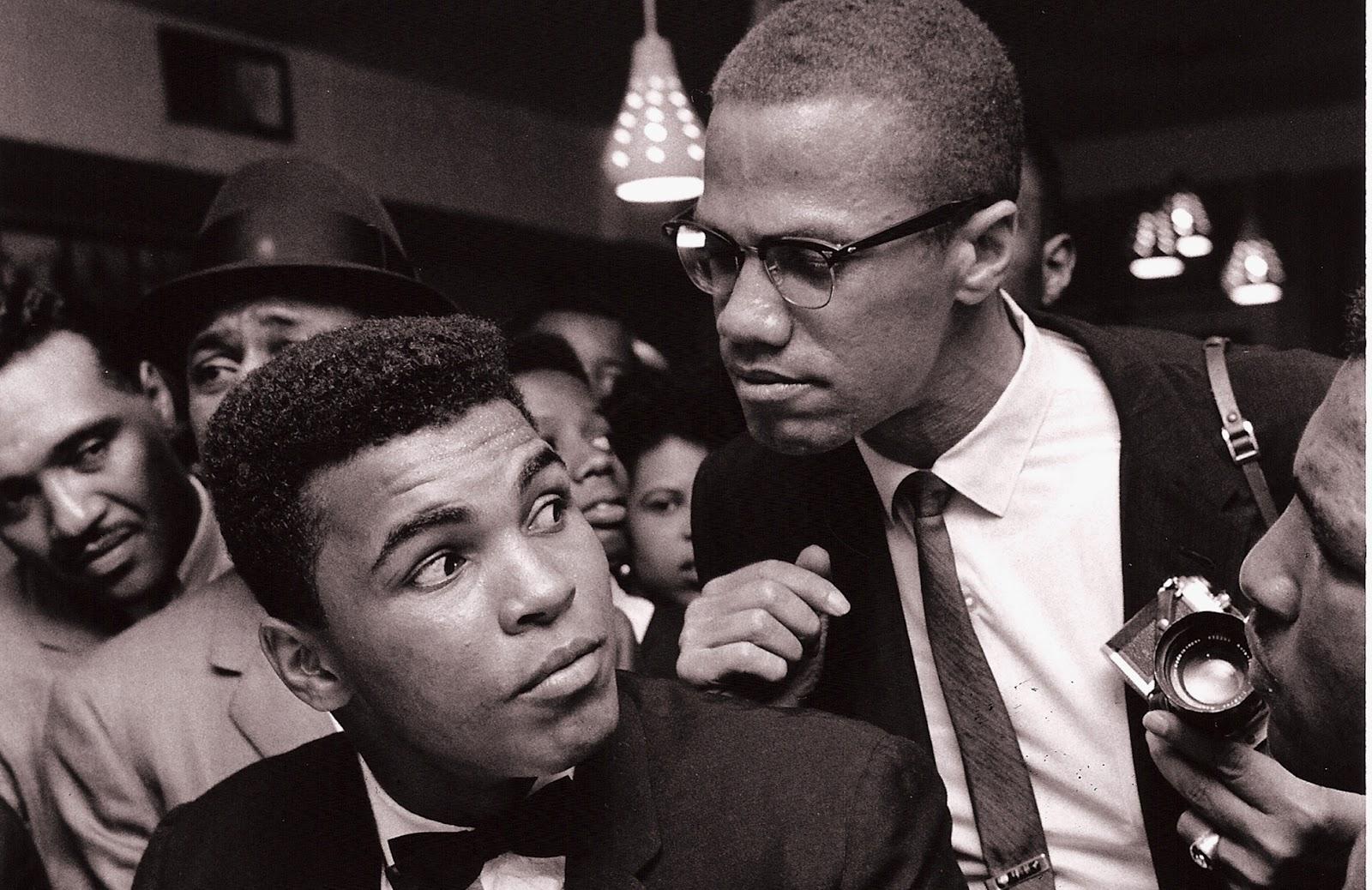 Purgatory G Cat Fish D Dialogue Malcolm X Wikipedia The Free