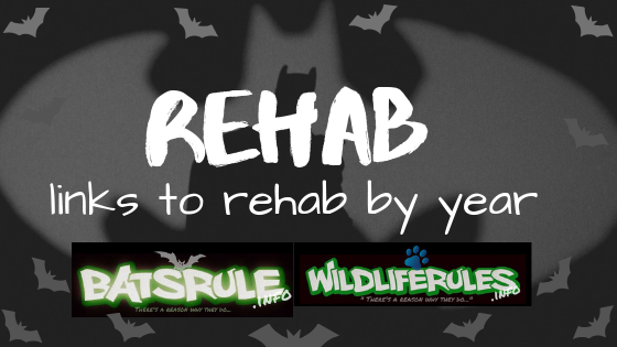 Rehab and Rescues by Year