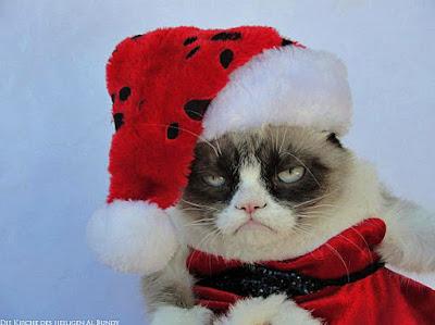 Lustige Weihnachtsbilder - traurige Katze mit Weihnachtsmütze