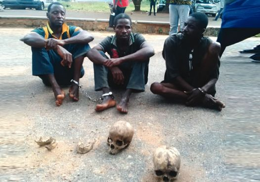 I Bought Two Human Heads For N10,000 - Herbalist Opens Up