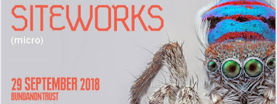 Flier for Siteworks 2018 at Bundanon Trust.