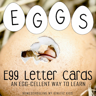 Free printable Montessori-inspired moveable alphabet for learning about animals that hatch from eggs.  Also good for Easter.