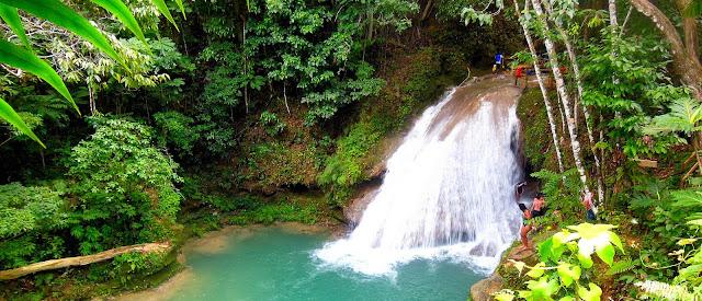 Petite cascade entourée de végétation tropicale
