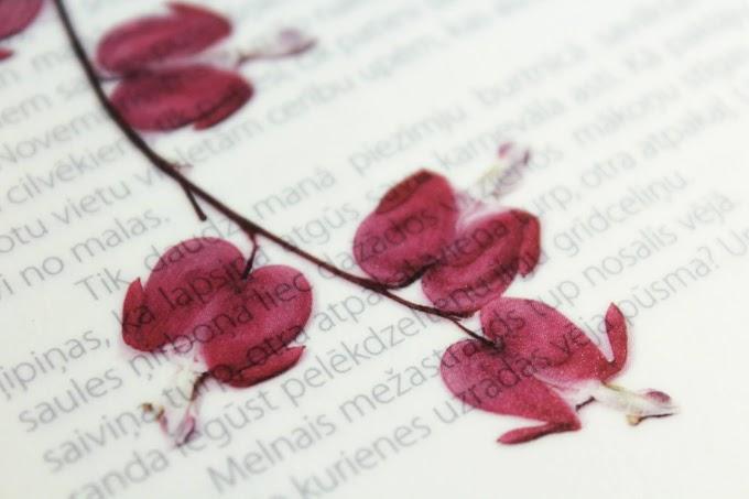 ¿Cómo enseñar poesía en el aula de clase?
