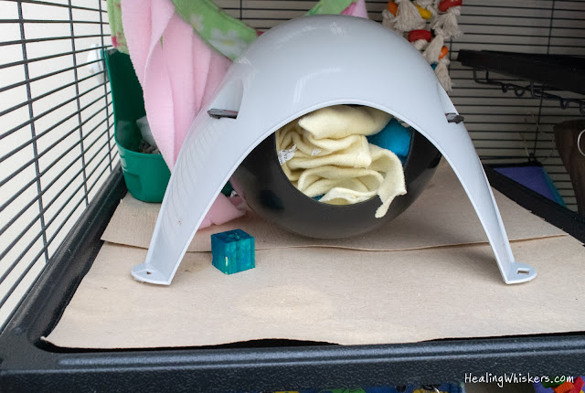 biodegradable small animal cage liner