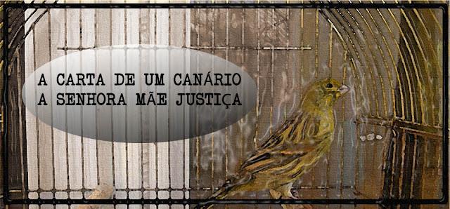 A carta de um canário à senhora mãe justiça
