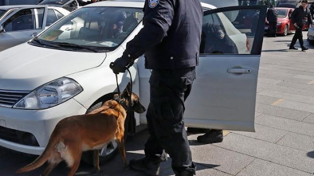 Σύλληψη για ναρκωτικά στο Ναύπλιο με την συνδρομή αστυνομικού σκύλου