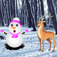 Play HiddenOGames Hidden Snow …