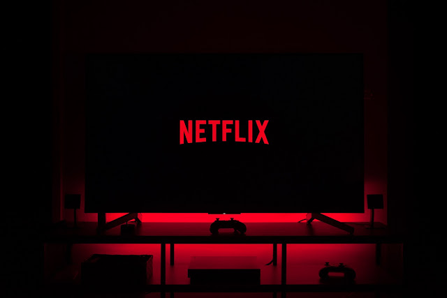 The business model of Netflix with Netflix revenue growth