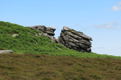 A gritstone outcrop rising out of heather and bracken.