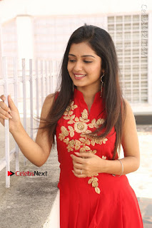 Telugu Actress Priyanka Jain Stills in Red Dress at Amazing Arts Production no 1 Movie Opening  0009.JPG