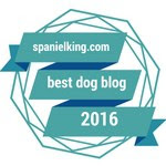 Award from SpanielKing.com for 2016 Best Dog Blog