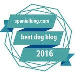 Award from SpanielKing.com for 2016 Best Dog Blog