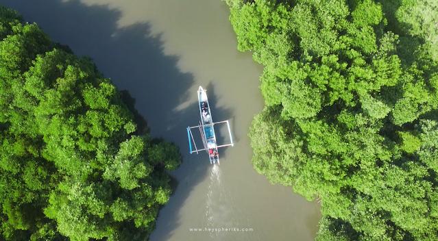 Wisata Mangrove Tanjung Peni