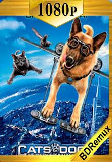 Como perros y gatos 2 La Venganza de Kitty Galore (2010) [1080p BD REMUX] [Latino-Inglés] [LaPipiotaHD]