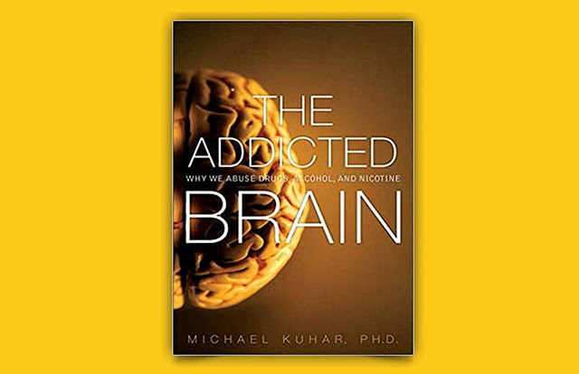 Download The addicted brain why we abuse drugs alcohol and nicotine PDF for free