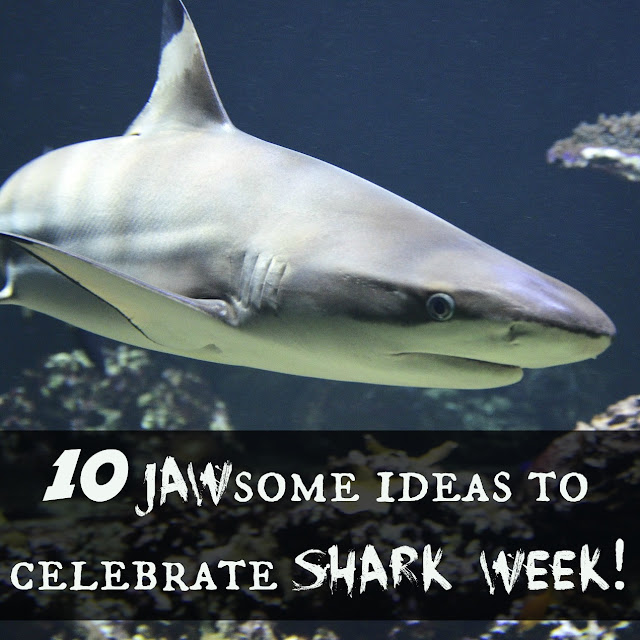 10 JAWSome ideas to celebrate Shark Week!