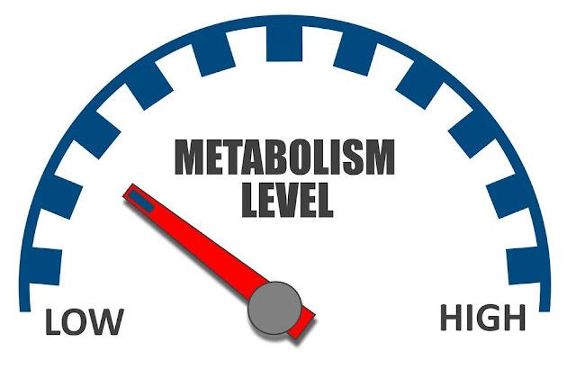 كيف تزيد من معدل الايض في الجسم ؟
