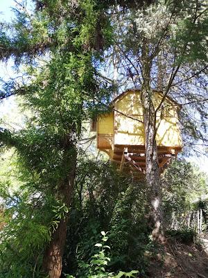 Lombház a fán