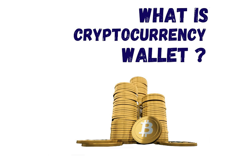 What is Crypto Currency Wallet? How to Store Bitcoins?