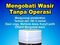 obat wasir ambeien tradisional
