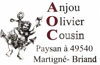 beaux-vin blog actualité vin procès olivier cousin aoc