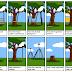 Một dự án phần mềm trong đời thực....