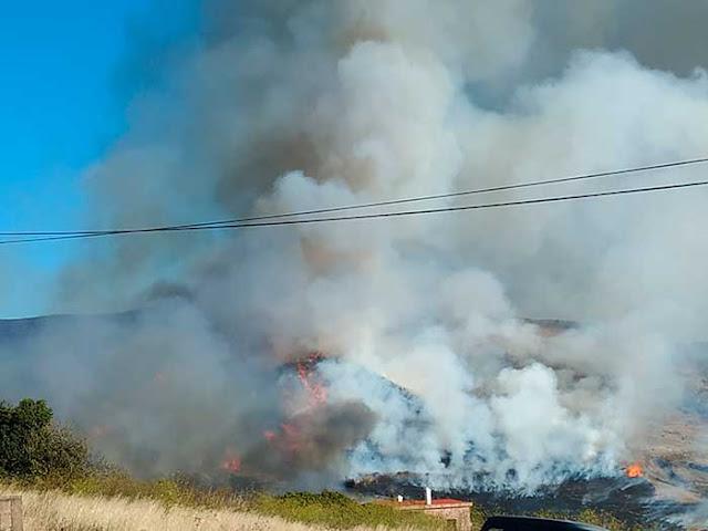 Conatos de incendio en Tenerife