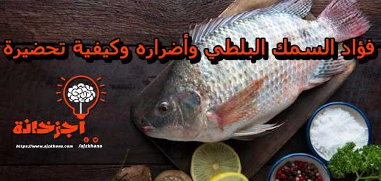 فؤاد السمك البلطي وأضراره وكيفية تحضيرة