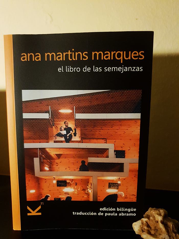 Ana Martis Marques escribe sobre lo invisible