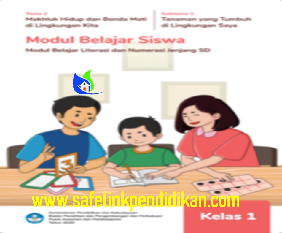 Modul BDR Literasi Dan Numerasi Tema 2