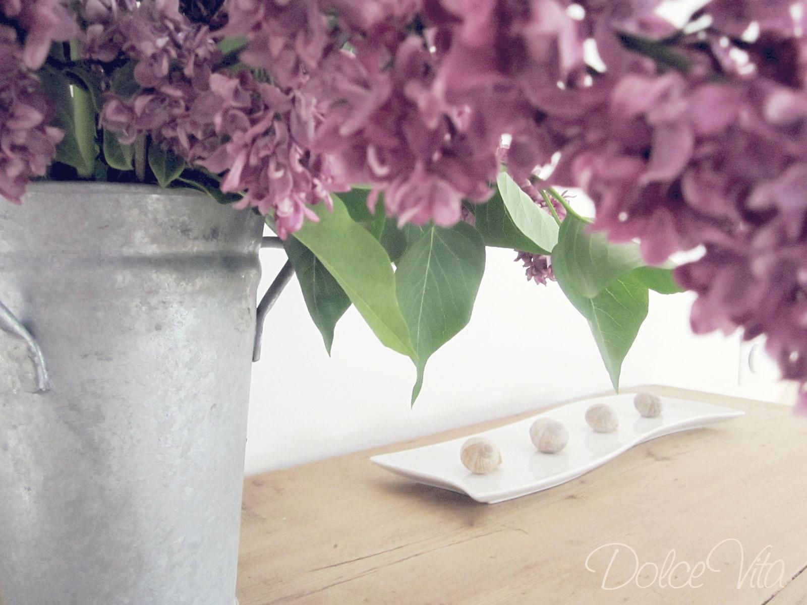 dolce vita flieder in der zink vase. Black Bedroom Furniture Sets. Home Design Ideas