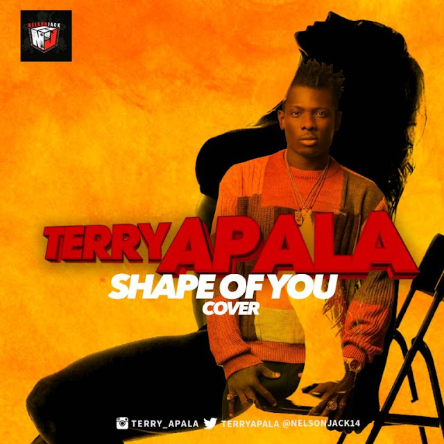 Terry-apala-shape-of-you-cover-mp3
