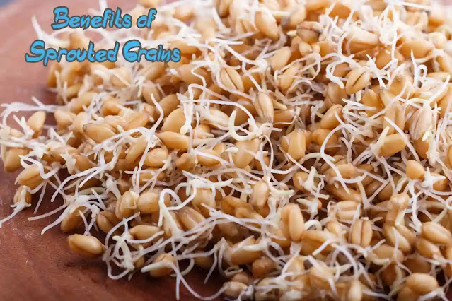 Benefits of Sprouted Grains