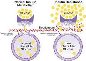 ما هي مقاومة الانسولين
