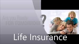 Types Of Insurance Life [Insurance Soul]