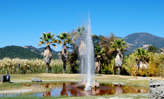 Old Faithful Geyser - Calistoga, California, USA
