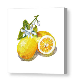 Bestselling Watercolor painting of lemons by the artist Irina Sztukowski
