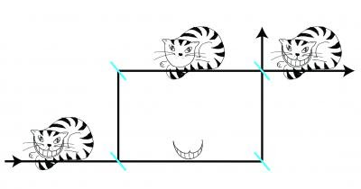 Diagram of Cheshire Cat Experiment