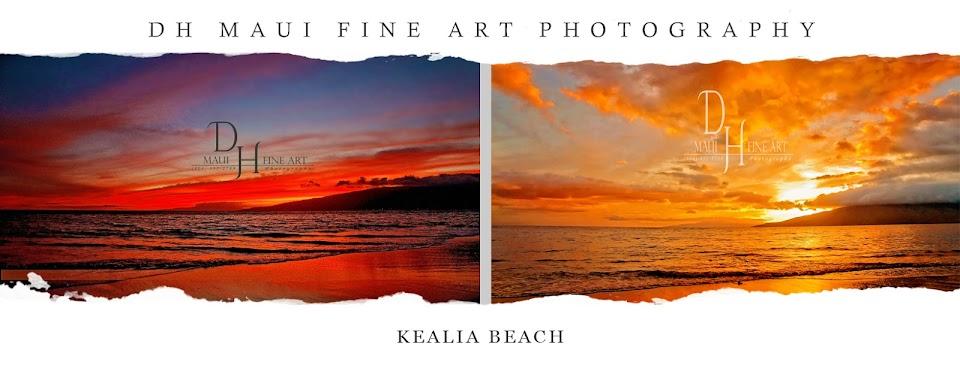 DH Maui and DH Idaho Fine Art Photography, and Velata Masonry
