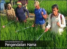 6 Prinsip Penggunaan Pestisida menurut ilmu PHT