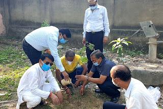 लायंस क्लब ने दिवंगत सदस्यों की स्मृति में किया पौधरोपण    #NayaSaberaNetwork